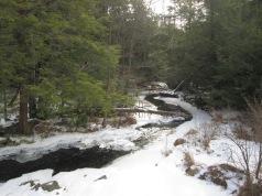 Winter in Thornhurst