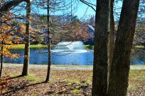Snow Ridge Village