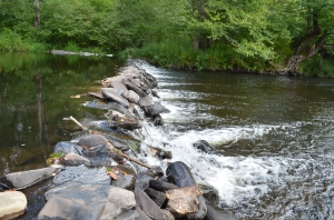 Beautiful Lehigh River