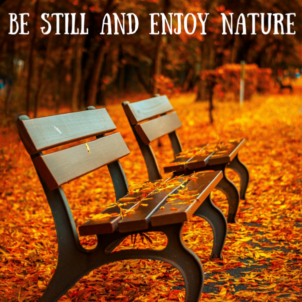 Be Still and Enjoy Nature