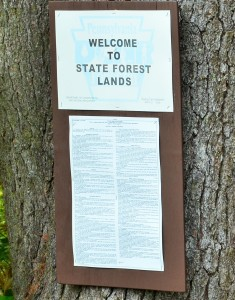 State Forest Lands