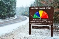 A Snowy Day in Thornhurst