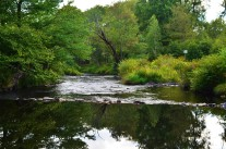 The Lehigh River in Summer