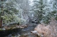Late Winter in Thornhurst