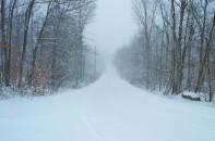 Stroll Through The Blizzard
